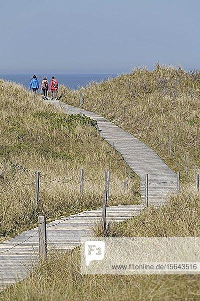 Weg durch die Dünen zum Strand  Insel Spiekeroog  Ostfriesland  Niedersachsen  Deutschland  Europa