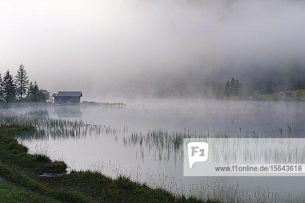 Nebel am Ferchensee  bei Mittenwald  Werdenfelser Land  Wettersteingebirge  Oberbayern  Bayern  Deutschland  Europa