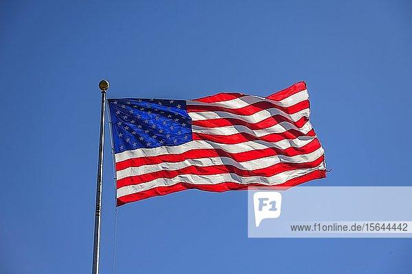Amerikanische Flagge  Nationalflagge  US-amerikanische Fahne weht im Wind vor blauem Himmel  USA  Nordamerika