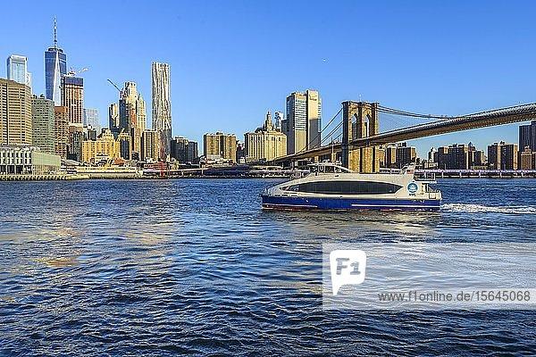 Fähre  NYC Ferry auf dem East River  Ausblick vom Pier 1 auf die Skyline von Manhattan  Manhattan Bridge  Dumbo  Downtown Brooklyn  Brooklyn  New York