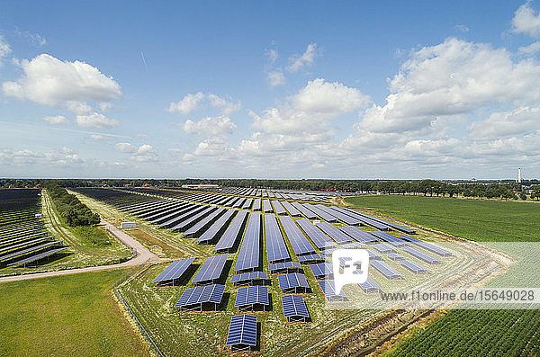 Große Solarparks  Andijk  Nord-Holland  Niederlande