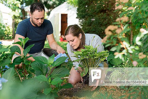 Ehepaar Gartenarbeit im Hinterhof