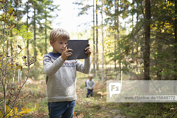 Boy taking photograph of forest  brother following behind