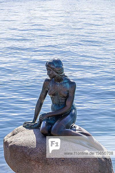 Statue of the Little Mermaid  Copenhagen  Denmark