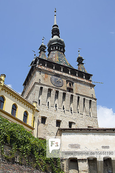 Clock Tower  Sighisoara  UNESCO World Heritage Site  Mures County  Transylvania Region  Romania