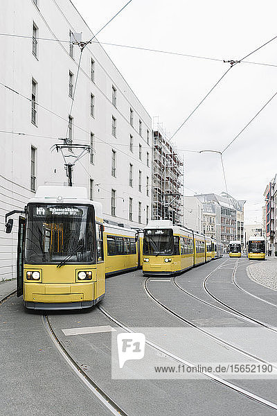 View of trams in the city  Berlin  Germany