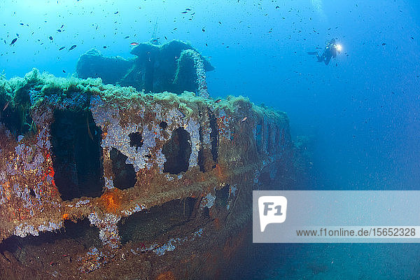 France  Corsica  Sunken shipwreck of Alcione C tanker with scuba diver in background