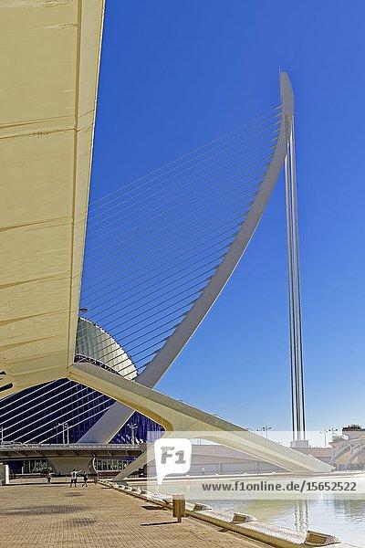 Museu de les Ciències Príncep Felip  Ciutat de les Arts i les Ciéncies  Valencia  Spain  Europe