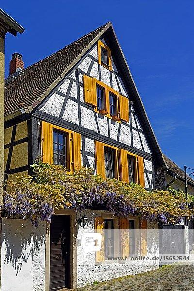 Timber framed house  Traenkgasse  Speyer  Rhineland-Palatinate  Germany  Europe