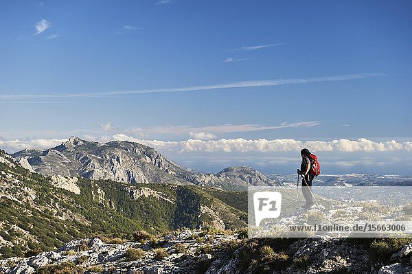 Woman with red backpack hiking in Serrella mountain range  Confrides (province of Alicante  Valencian Community)