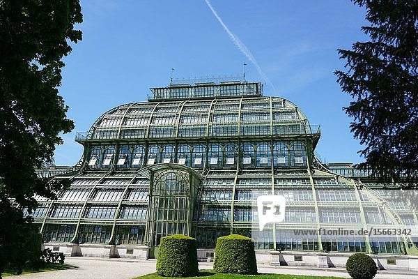 The Palm House in the Schönbrunn gardens  Vienna  Wien  Austria  Europe.