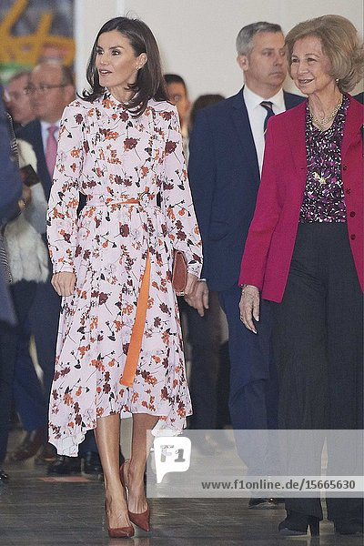 Queen Letizia of Spain attend 'Rastrillo Nuevo Futuro' on November 19  2019 in Madrid  Spain