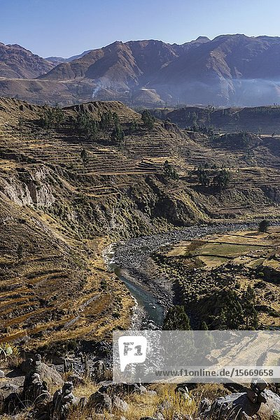 Colca Canyon  Andes mountain Arequipa  Perú South America.