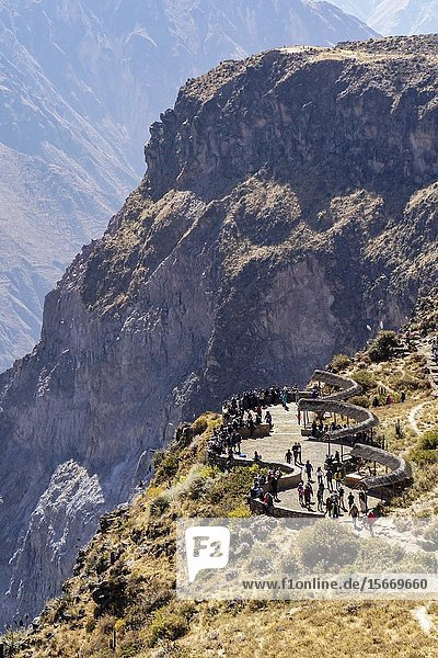 Colca Canyon Condor viewpoint.Andes mountain Arequipa  Perú South America.