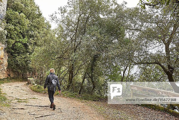 Medium age woman walking by the forest  Santoña  Cantabria  Spain  Europe.