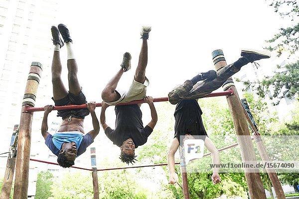 Young men doing acrobatics in park. Frankfurt am Main  Germany.