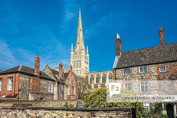 Norwich Cathedral in Norwich city centre  Norfolk  East Anglia  England  UK.