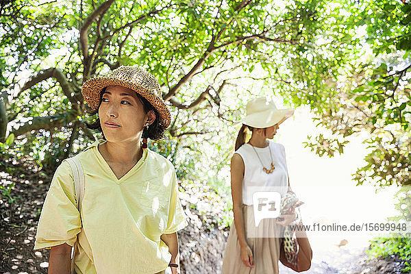 Zwei Japanerinnen mit Hüten  die in einem Wald wandern.