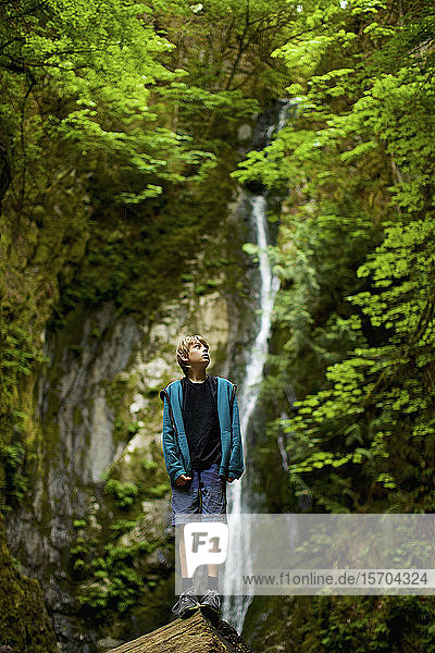 Curious boy in woods with waterfall  Goldstream  British Columbia  Canada