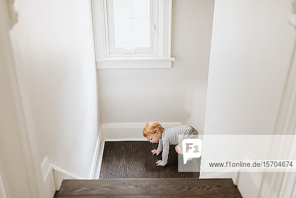 Toddler crawling up stairway in house