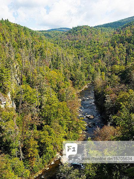 Linville River  Blue Ridge Mountains  Appalachia  North Carolina  United States of America  North America
