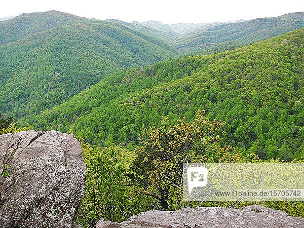 View of Blue Ridge Mountains  North Carolina  United States of America  North America