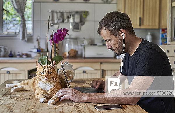 Mann  der von zu Hause aus arbeitet  mit Katze am Küchentisch sitzt und einen Laptop benutzt