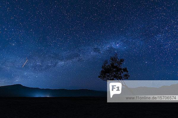 Indonesien  Ost-Java  Milchstrasse am blauen Sternenhimmel über der Silhouette eines einsamen Baumes im Bromo Tengger Semeru-Nationalpark