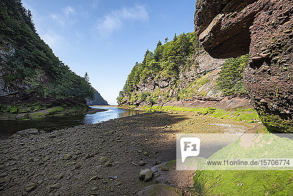 Kanada  New Brunswick  Alma  Point Wolfe River im Fundy National Park