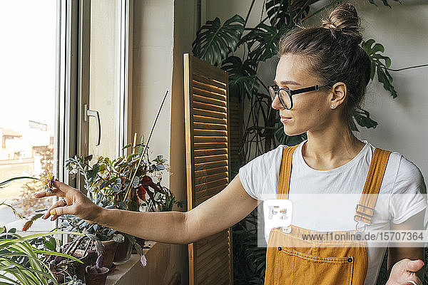 Young woman caring for plants on window sill