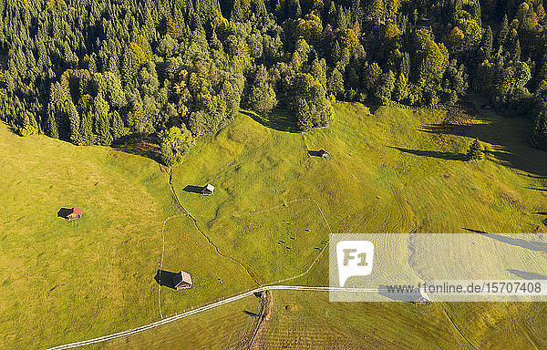 Deutschland  Oberbayern  Werdenfelser Land  Krun  Luftaufnahme der grünen Felder an einem sonnigen Tag