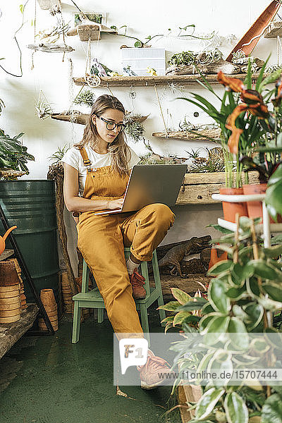 Young woman using laptop in a small gardening shop