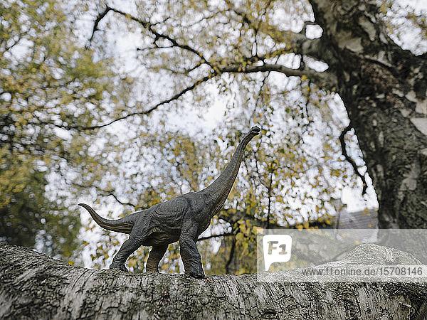 Dinosaur figurine on a tree in autumn