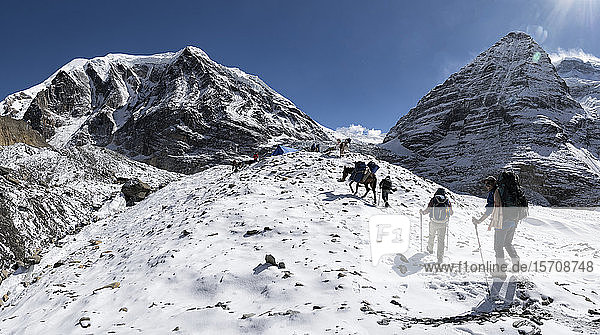 Trekkinggruppe am Chonbarden-Gletscher  Tukuche Peak  Dhaulagiri Circuit Trek  Himalaya  Nepal