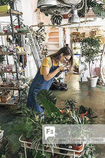Young woman taking pictures of plants in a small gardening shop