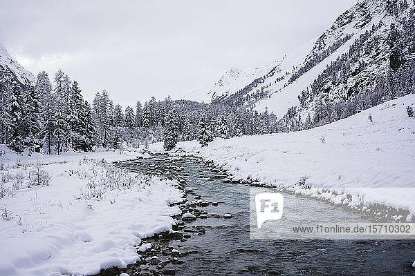 Verschneite Berglandschaft mit Fluss  Engadin  Schweiz