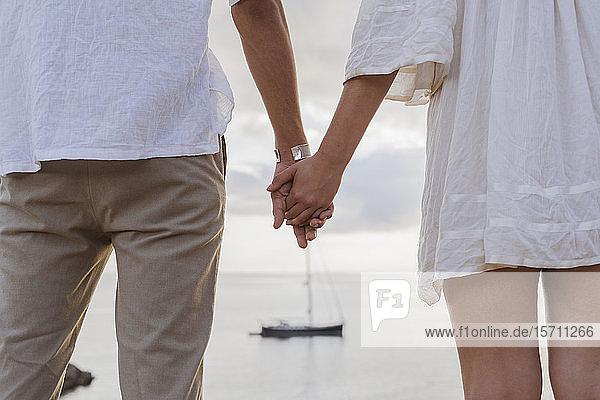 Rückansicht eines jungen verliebten Paares,  das vor dem Meer steht und sich an den Händen hält,  Ibiza,  Balearen,  Spanien