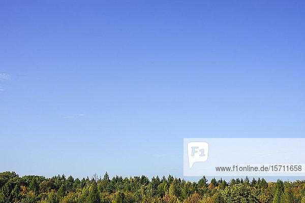 Deutschland  Bayern  Ebrach  Klarer blauer Himmel über dem Steigerwald im Herbst