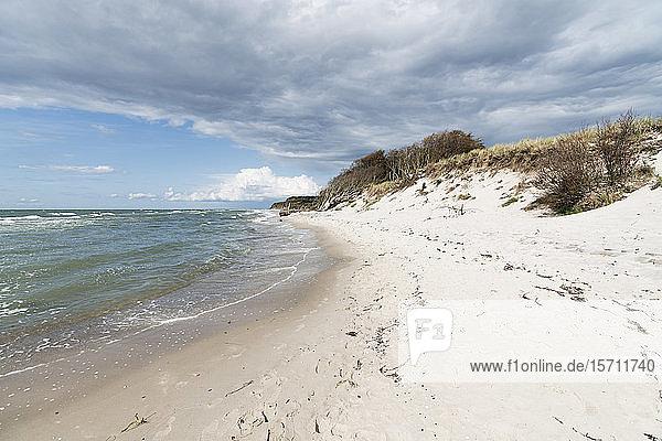 Germany  Darss  Empty beach on cloudy day