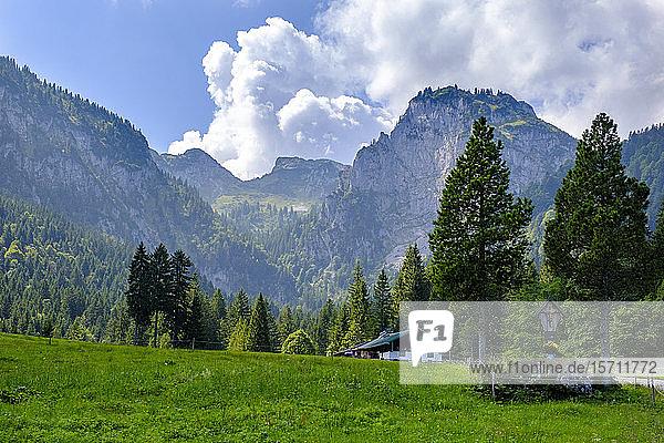 Deutschland  Bayern  Arzbach  Blick auf das abgeschiedene Café Hintere Langentalalm mit der Benediktenwand im Hintergrund