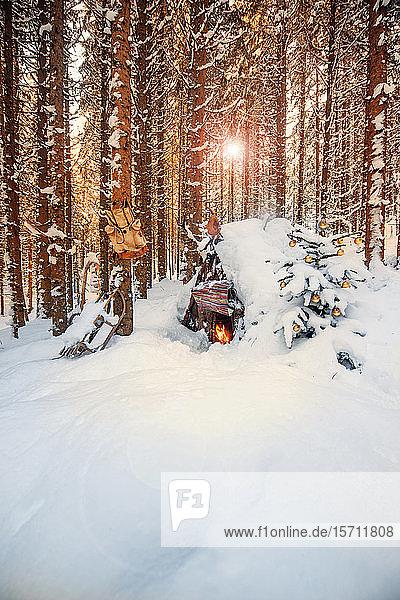 Österreich  Salzburg  Altenmarkt-Zauchensee  Einfacher Weihnachtsbaum vor schneebedeckter Waldhütte bei Sonnenuntergang