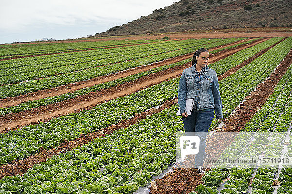 Woman with tablet and clipboard walking in lettuce field
