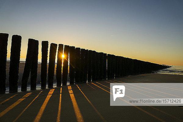 Niederlande  Cadzand-Bad  Strand mit Wellenbrecher bei Sonnenuntergang