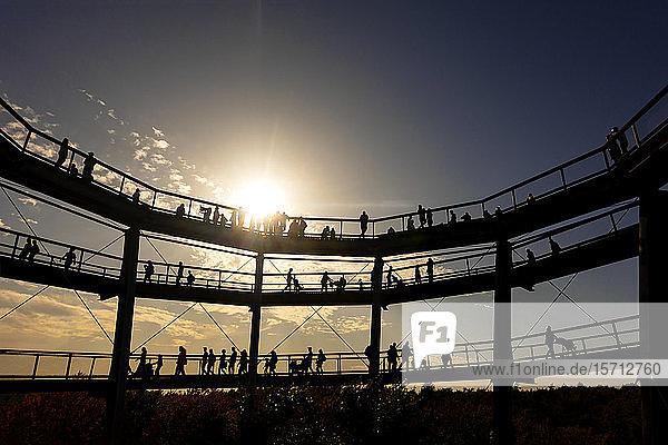 Deutschland  Bayern  Ebrach  Silhouetten von Menschen am Baumwipfelpfad bei Sonnenuntergang