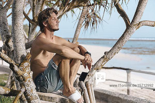 Mann auf dem Baum sitzend  Insel Sumbawa  Indonesien