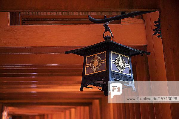 Japan  Präfektur Kyoto  Stadt Kyoto  Laterne hängt unter dem Torii-Tor des Fushimi Inari-taisha-Tempels