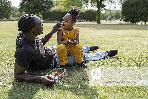 Vater und Tochter essen Obst auf einer Wiese in einem Park Vater und Tochter essen Obst auf einer Wiese in einem Park