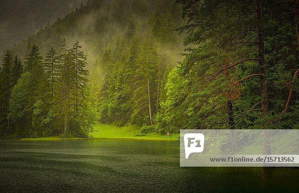 Fernsteinsee  Tyrol  Austria  Europe
