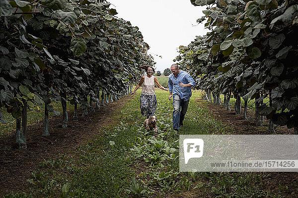 Ehepaar  das mit seinem Hund in einem Obstgarten läuft