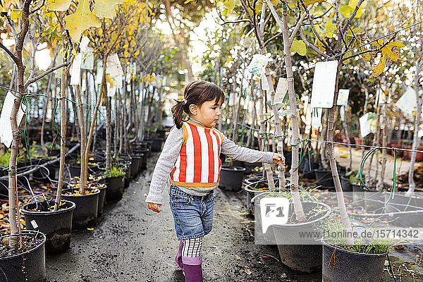 Little girl exploring potted trees in plant nursery